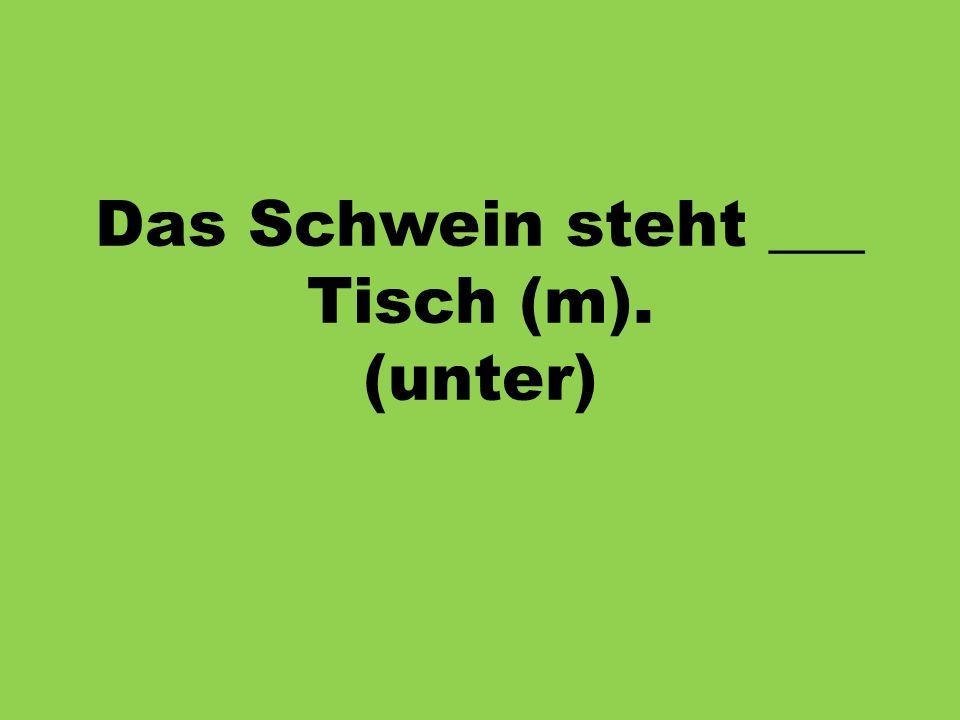 Das Schwein steht ___ Tisch (m). (unter)