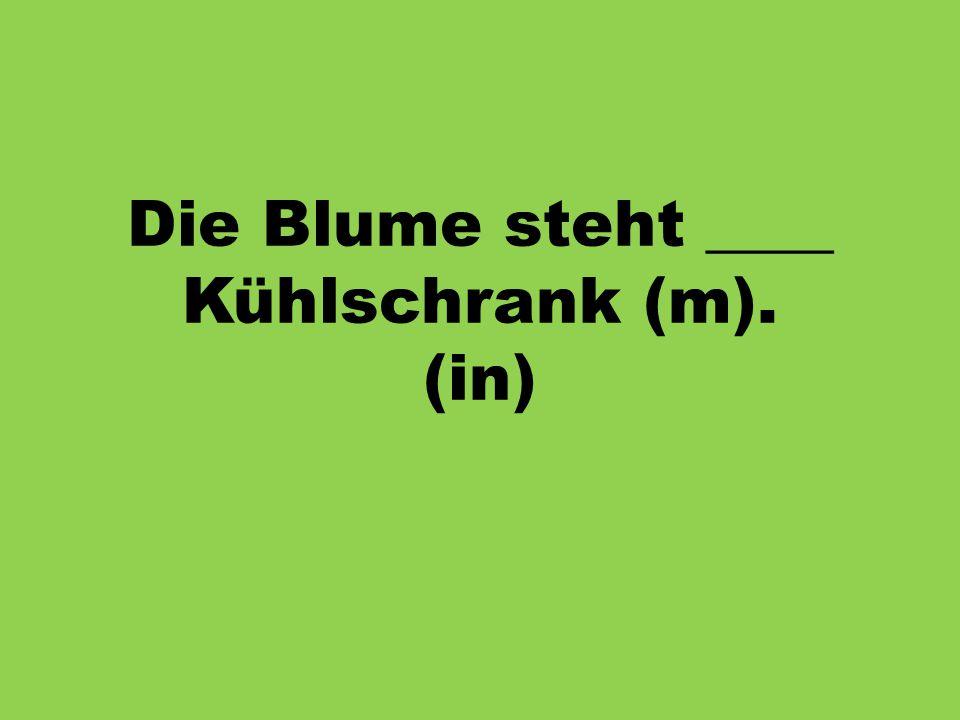 Die Blume steht ____ Kühlschrank (m). (in)