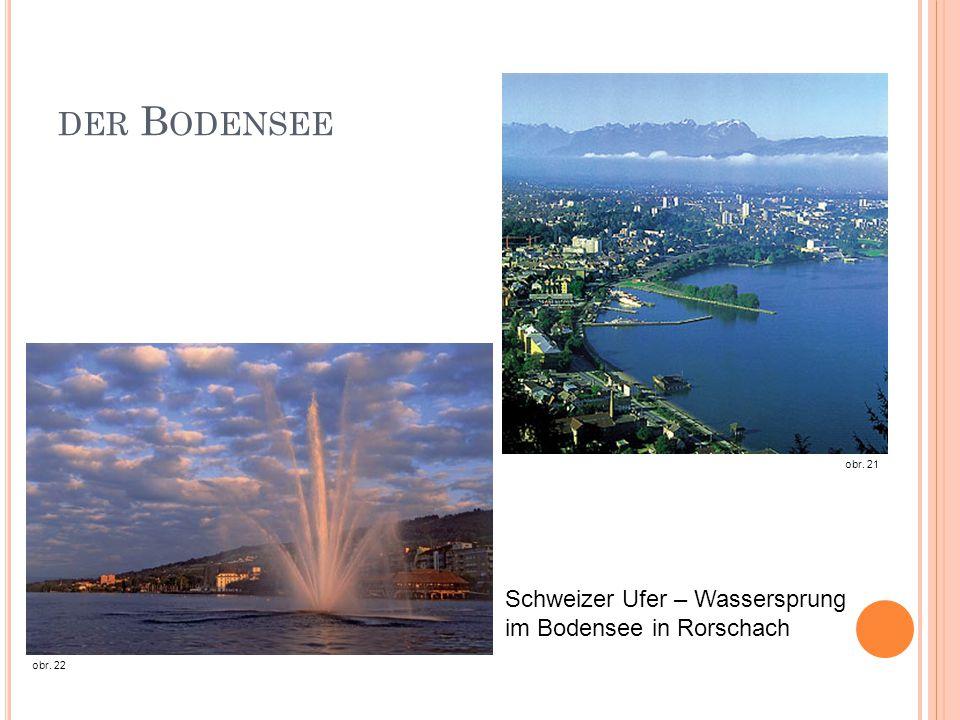 der Bodensee Schweizer Ufer – Wassersprung im Bodensee in Rorschach