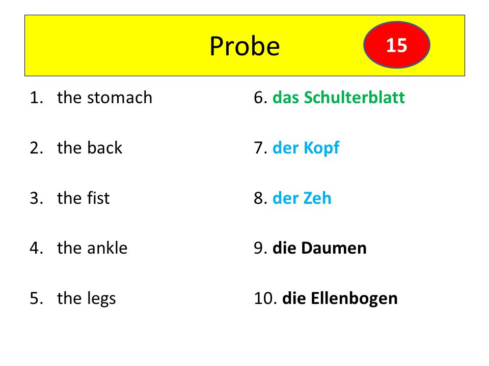 Probe 15 the stomach the back the fist the ankle the legs