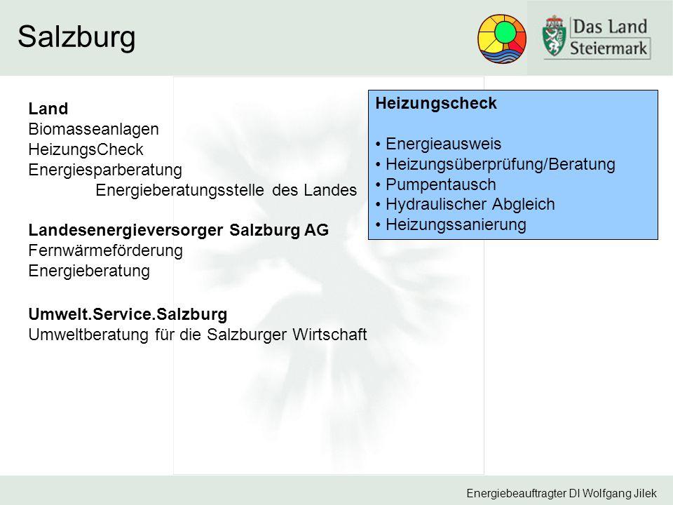 Salzburg Heizungscheck Land Biomasseanlagen Energieausweis