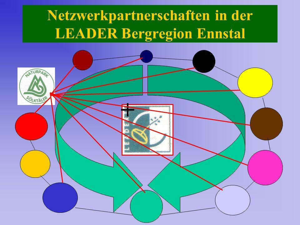 Netzwerkpartnerschaften in der LEADER Bergregion Ennstal