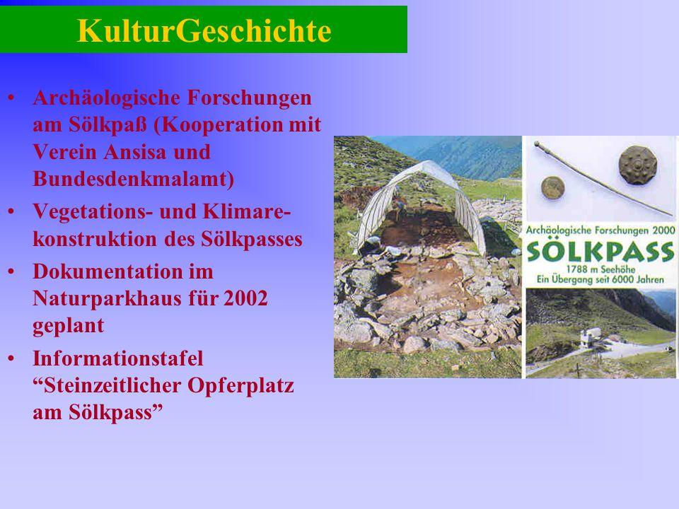 KulturGeschichte Archäologische Forschungen am Sölkpaß (Kooperation mit Verein Ansisa und Bundesdenkmalamt)