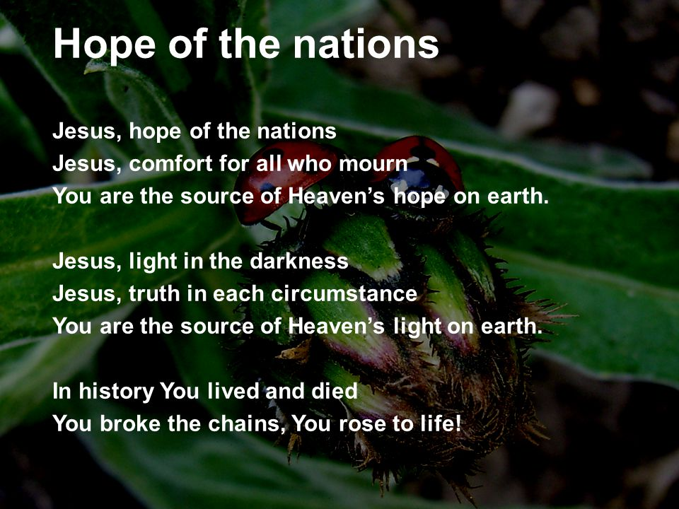 Hope of the nations Jesus, hope of the nations