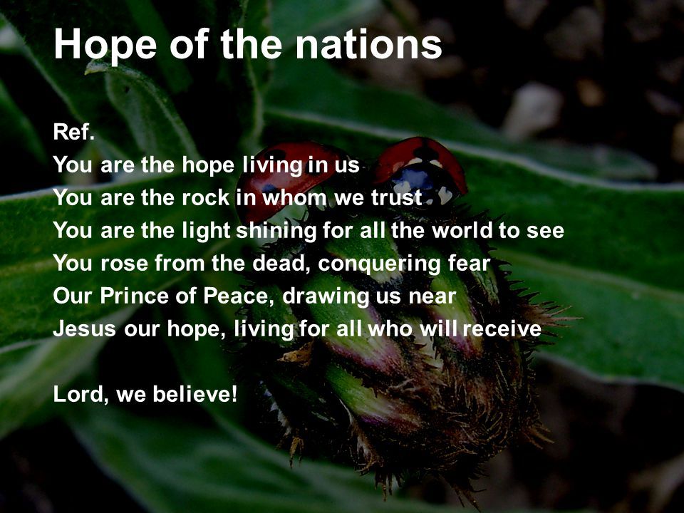 Hope of the nations Ref. You are the hope living in us