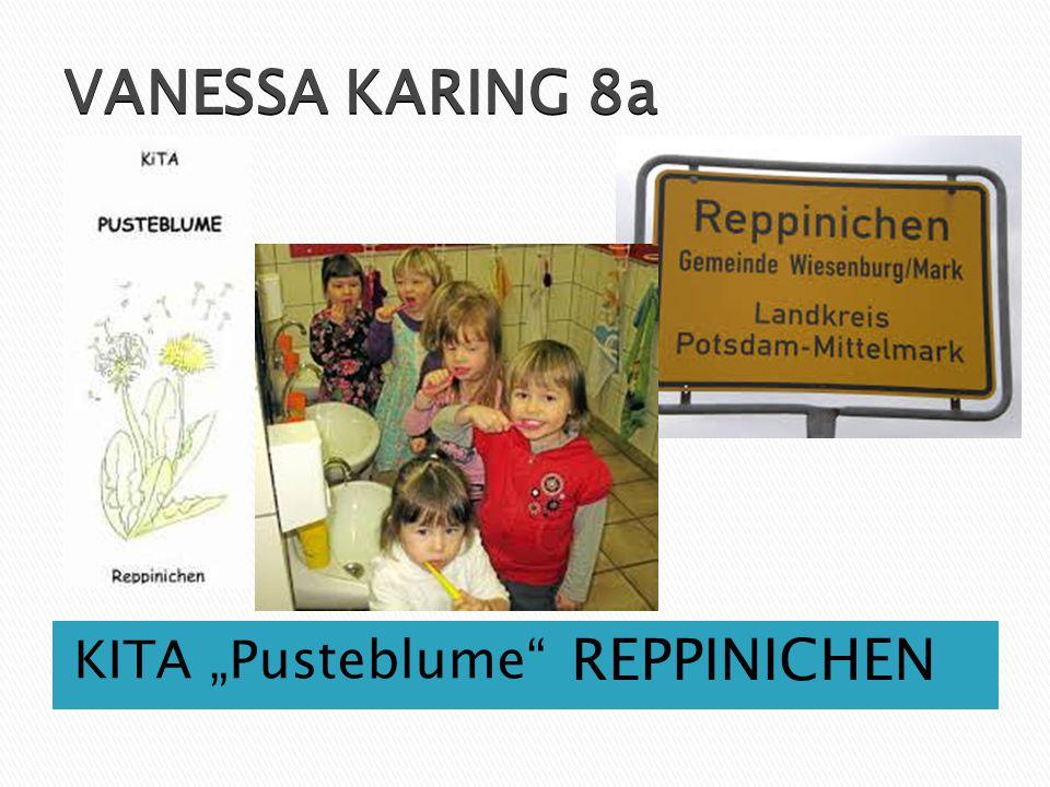 "VANESSA KARING 8a KITA ""Pusteblume REPPINICHEN"
