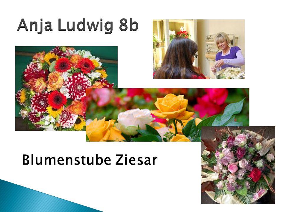 Anja Ludwig 8b Blumenstube Ziesar