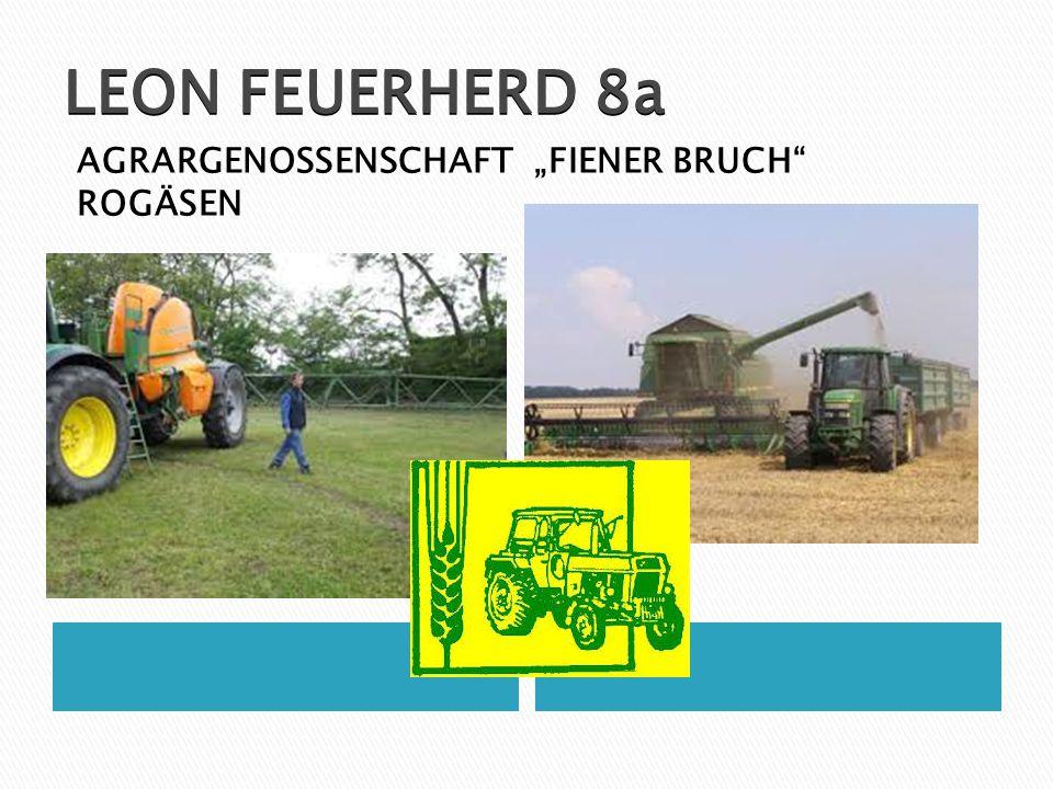 """LEON FEUERHERD 8a AGRARGENOSSENSCHAFT """"FIENER BRUCH ROGÄSEN"""