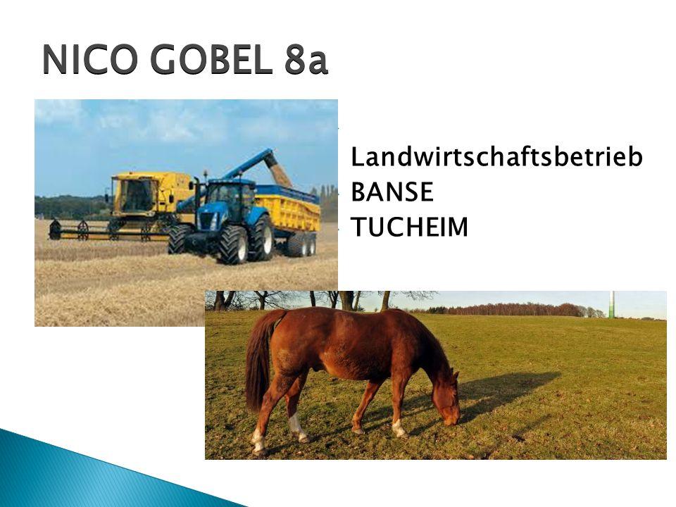 NICO GOBEL 8a Landwirtschaftsbetrieb BANSE TUCHEIM