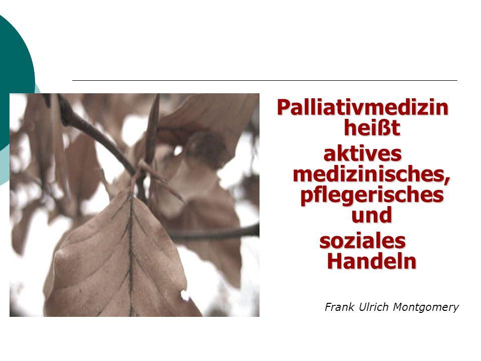 Palliativmedizin heißt aktives medizinisches, pflegerisches und
