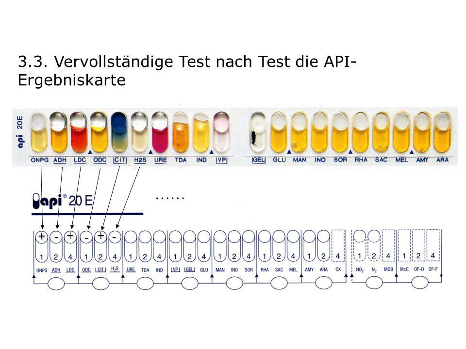 3.3. Vervollständige Test nach Test die API- Ergebniskarte