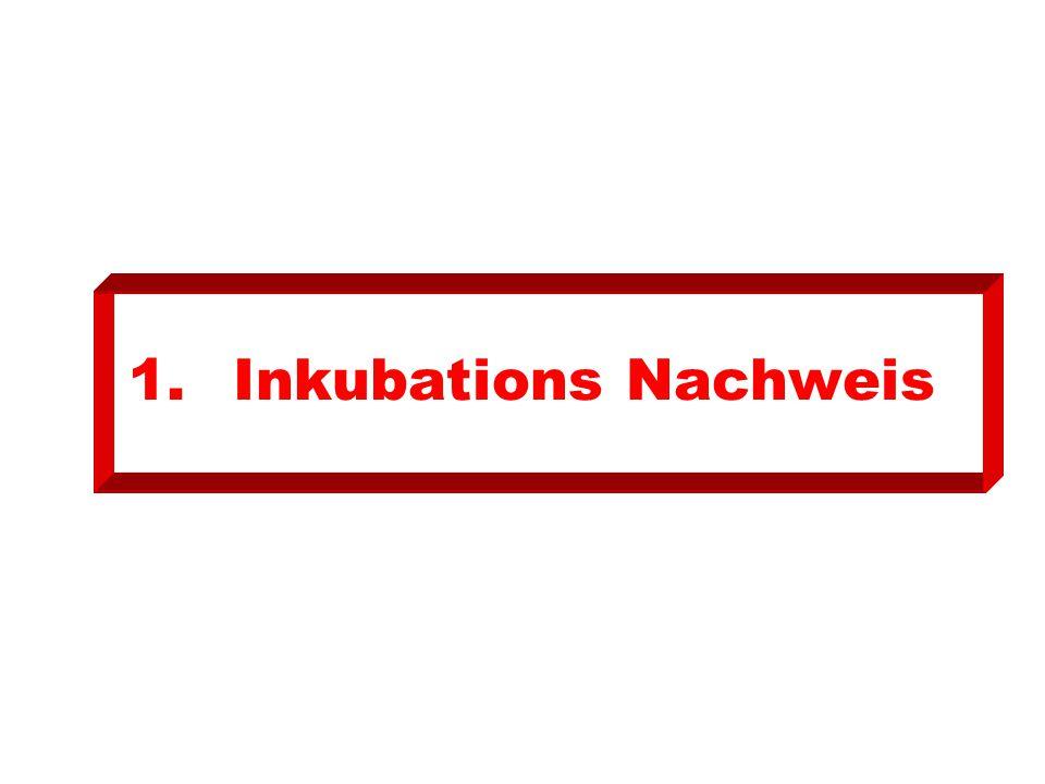 1. Inkubations Nachweis