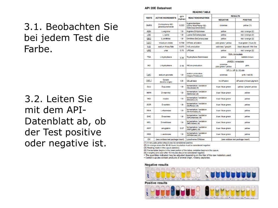 3.1. Beobachten Sie bei jedem Test die Farbe.