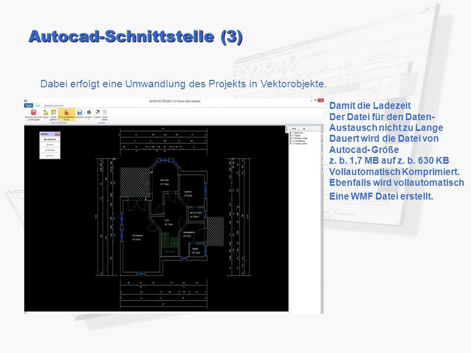 Autocad-Schnittstelle (3)