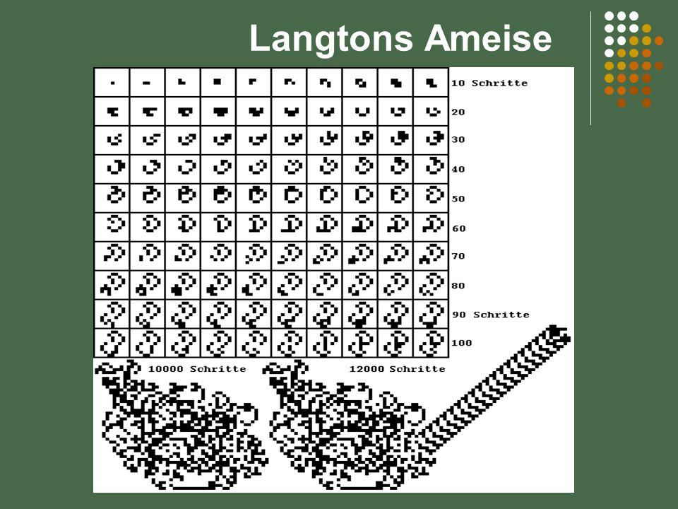 Langtons Ameise