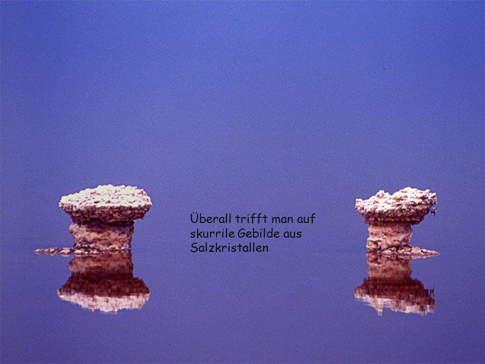 Überall trifft man auf skurrile Gebilde aus Salzkristallen