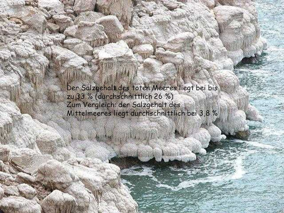 Der Salzgehalt des toten Meeres liegt bei bis zu 33 % (durchschnittlich 26 %)