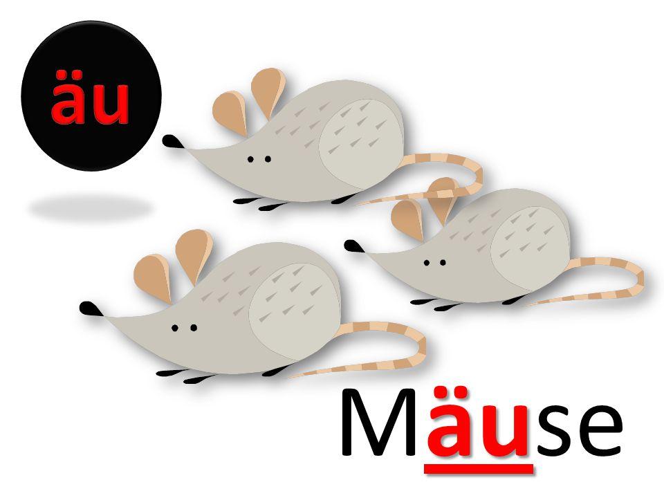 äu Mäuse