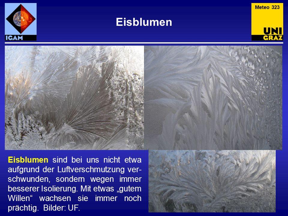 Meteo 323 Eisblumen.