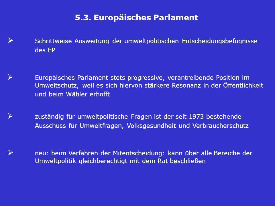 5.3. Europäisches Parlament