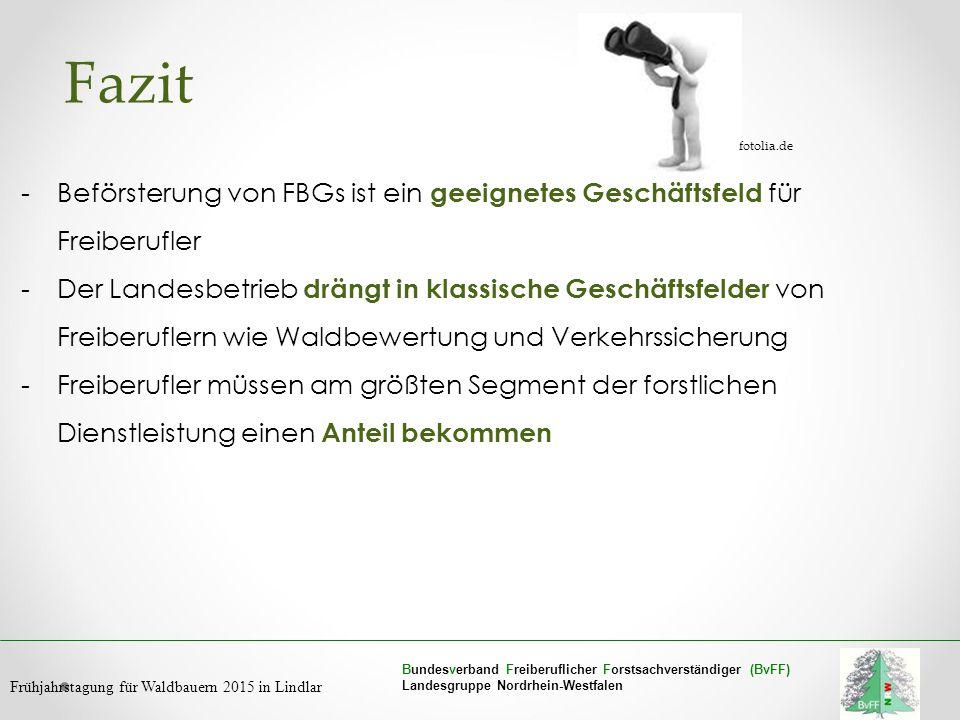 Fazit fotolia.de. Beförsterung von FBGs ist ein geeignetes Geschäftsfeld für Freiberufler.