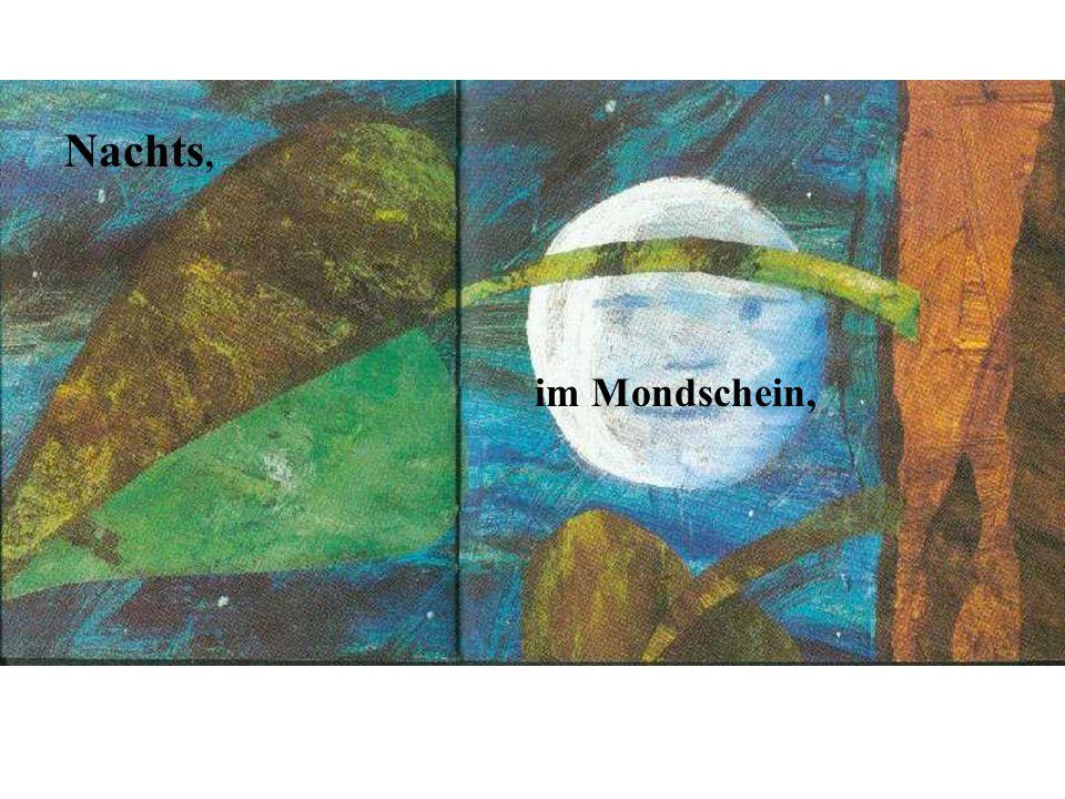 Nachts, im Mondschein,