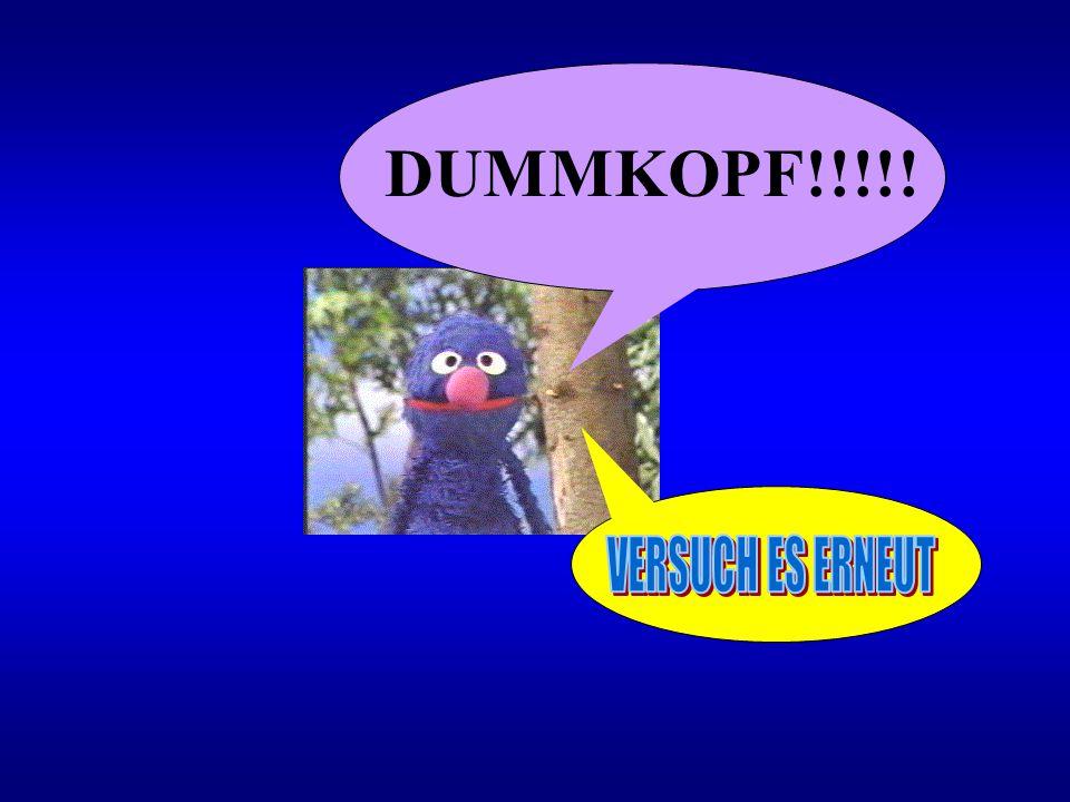 DUMMKOPF!!!!! VERSUCH ES ERNEUT