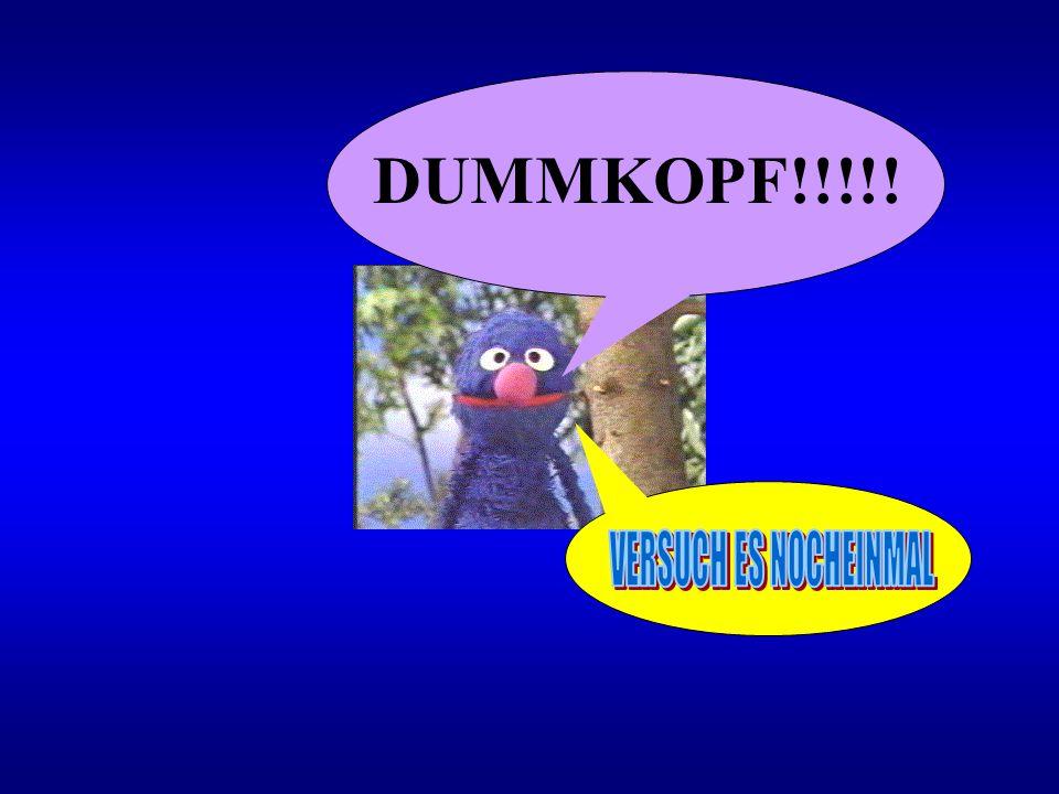 DUMMKOPF!!!!! VERSUCH ES NOCHEINMAL