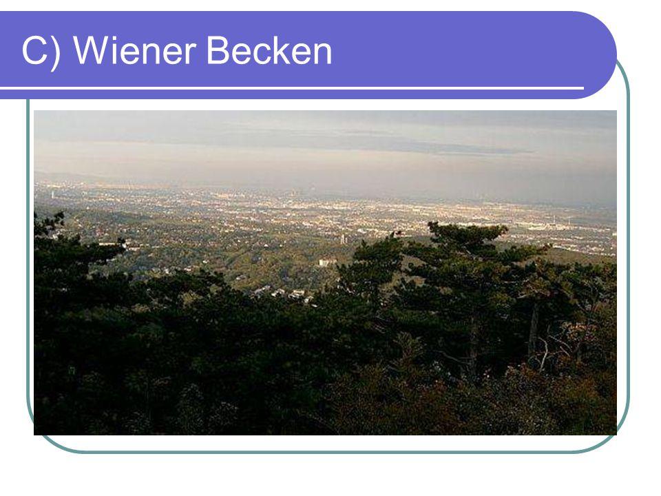 C) Wiener Becken