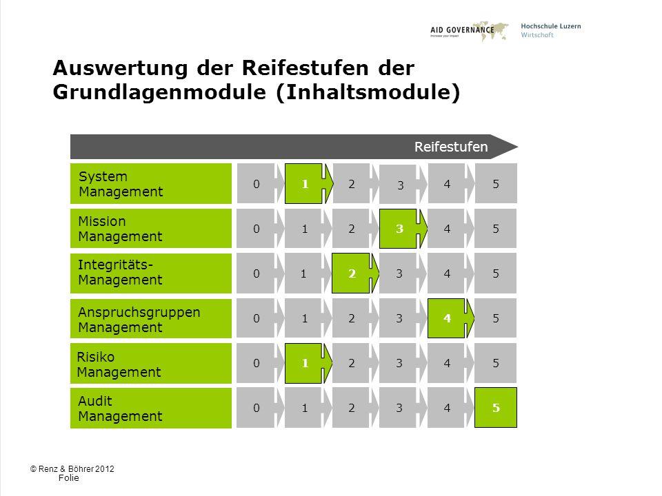 Auswertung der Reifestufen der Grundlagenmodule (Inhaltsmodule)