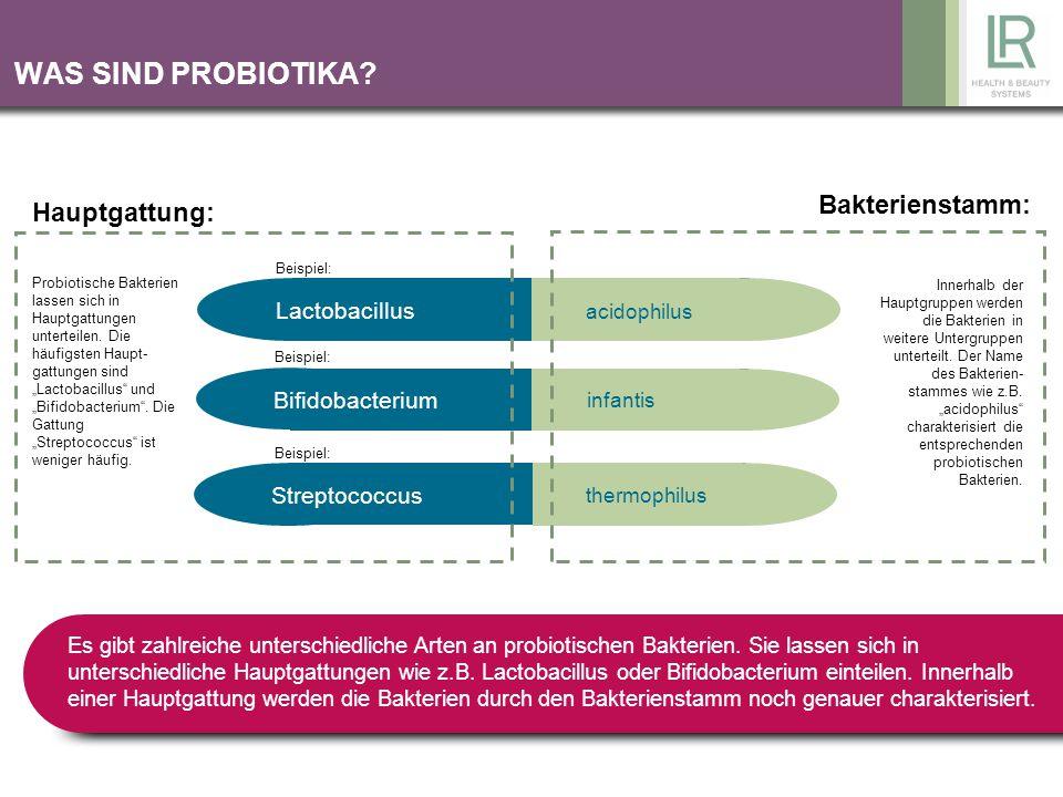 WAS SIND PROBIOTIKA Bakterienstamm: Hauptgattung: Lactobacillus