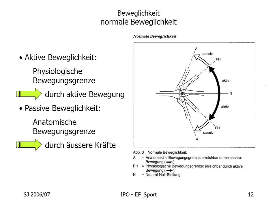 Tolle Bezug Auf Die Anatomie Bilder - Anatomie Ideen - finotti.info