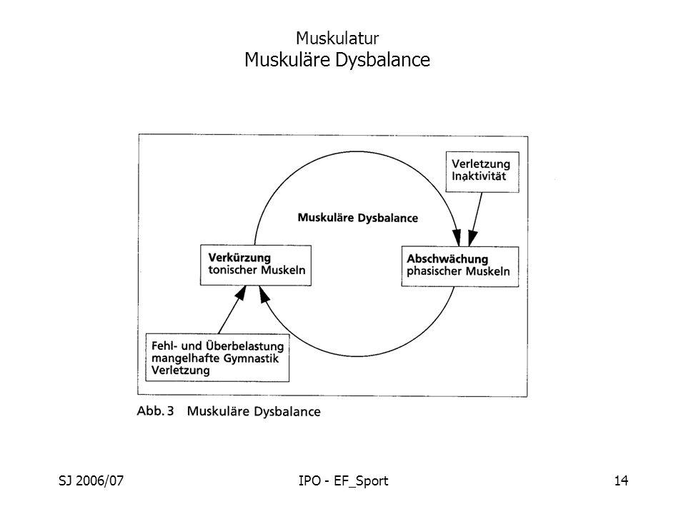 Muskulatur Muskuläre Dysbalance