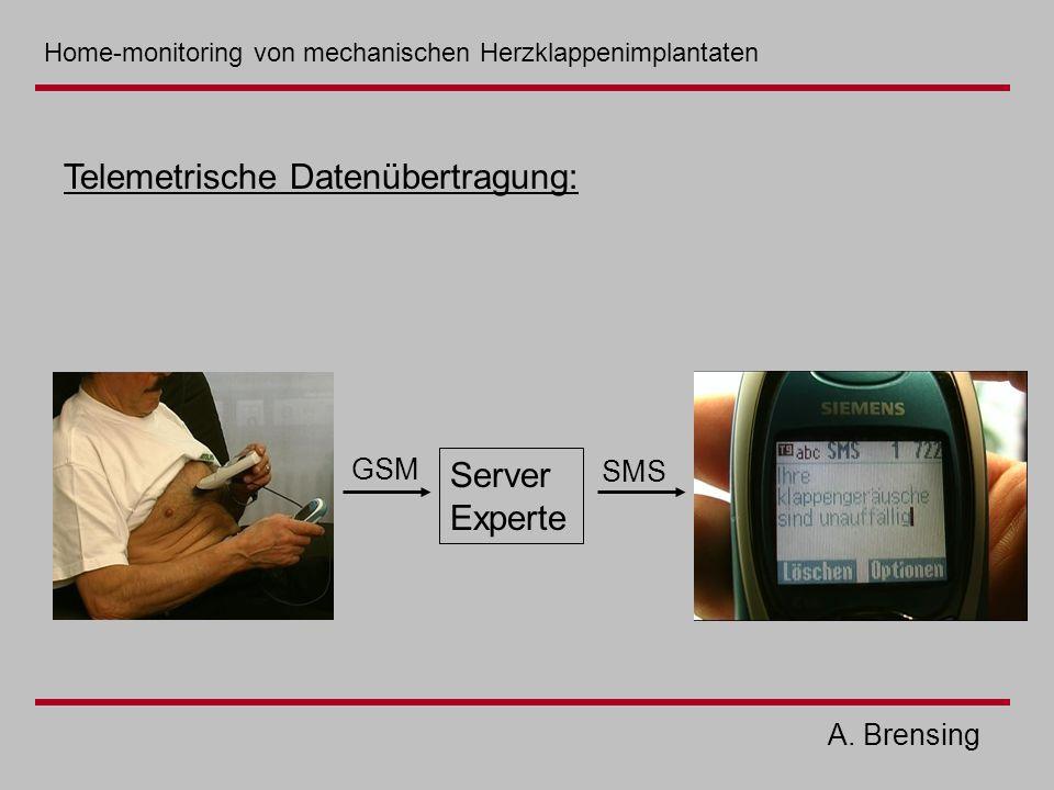 Telemetrische Datenübertragung: