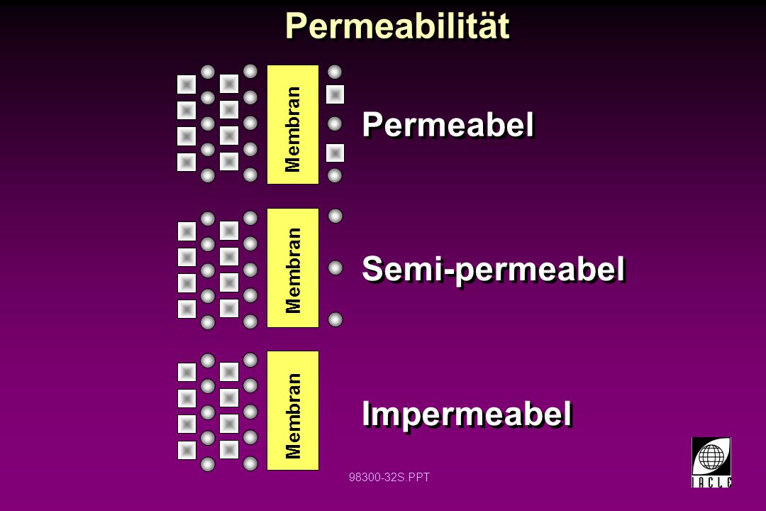 Permeabilität Permeabel Semi-permeabel Impermeabel Membran Membran