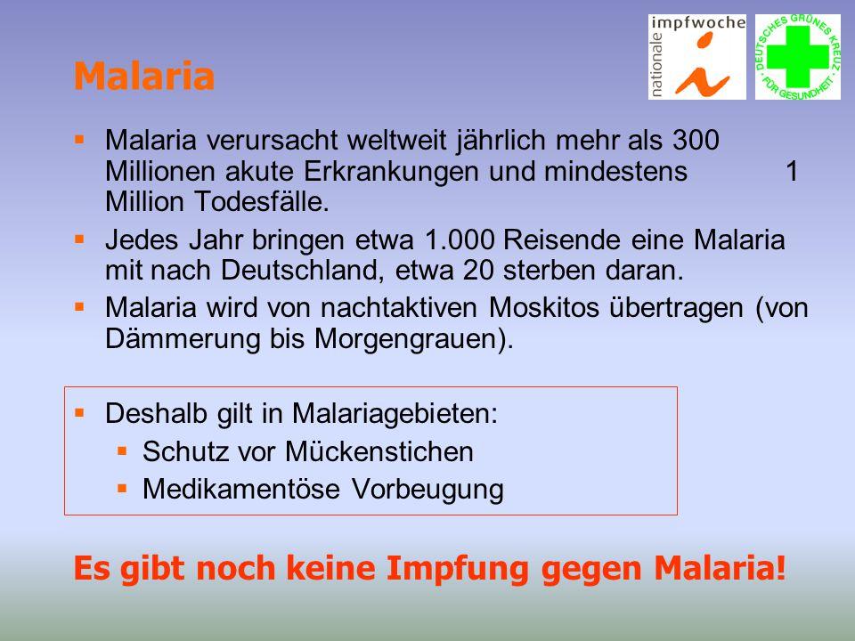 Malaria Es gibt noch keine Impfung gegen Malaria!
