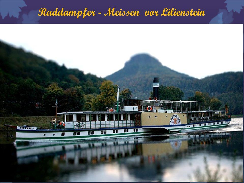Raddampfer - Meissen vor Lilienstein