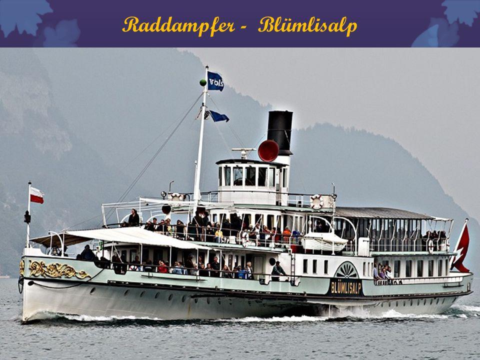 Raddampfer - Blümlisalp