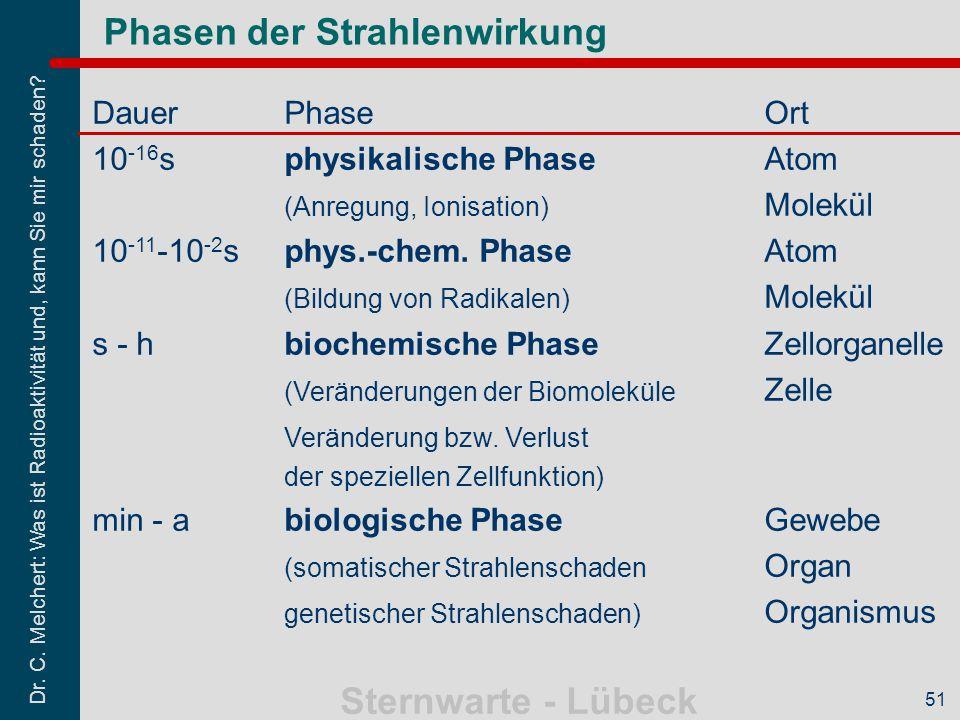 Phasen der Strahlenwirkung