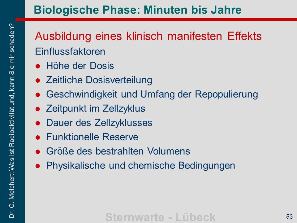 Biologische Phase: Minuten bis Jahre