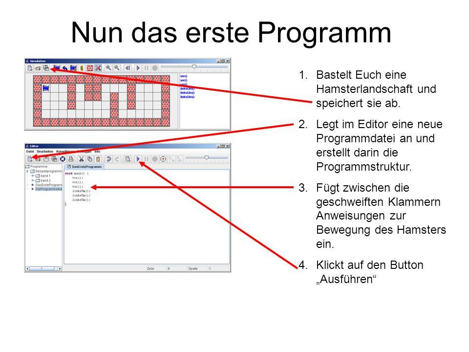 Nun das erste Programm Bastelt Euch eine Hamsterlandschaft und speichert sie ab.