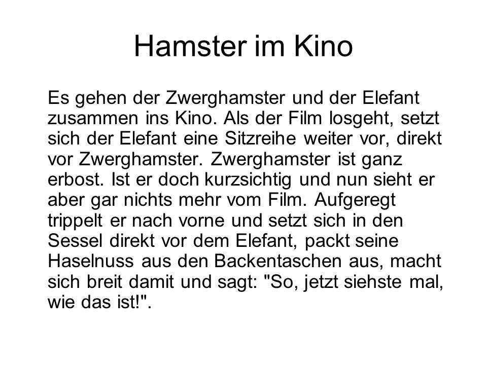 Hamster im Kino