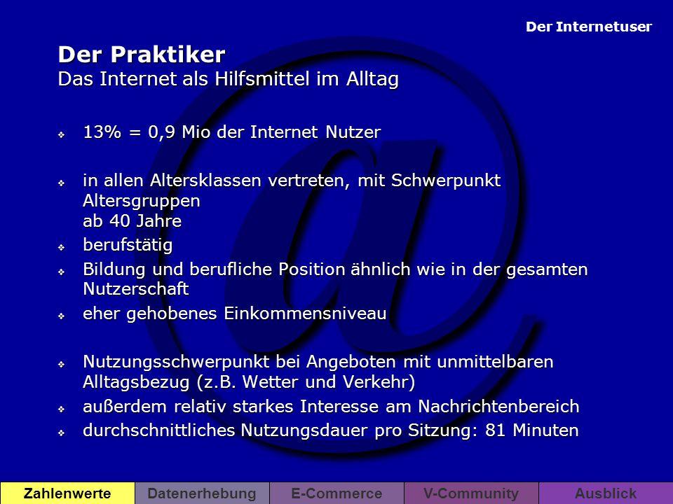 Der Praktiker Das Internet als Hilfsmittel im Alltag