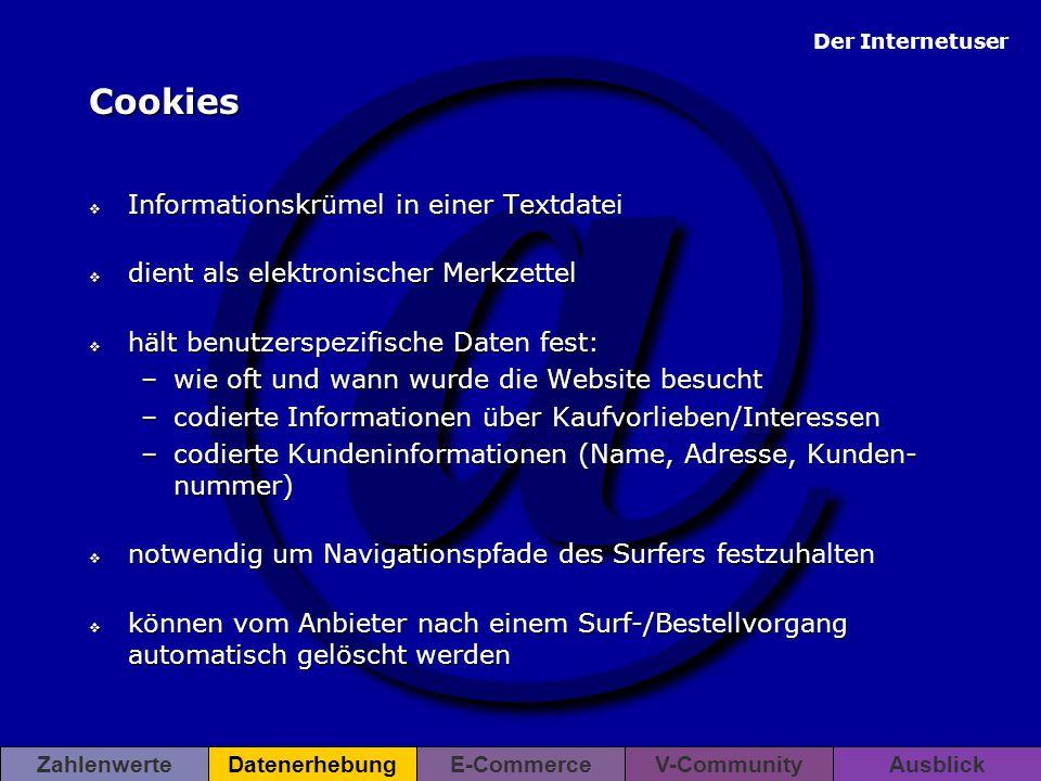 Cookies Informationskrümel in einer Textdatei