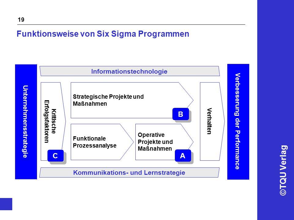 Funktionsweise von Six Sigma Programmen