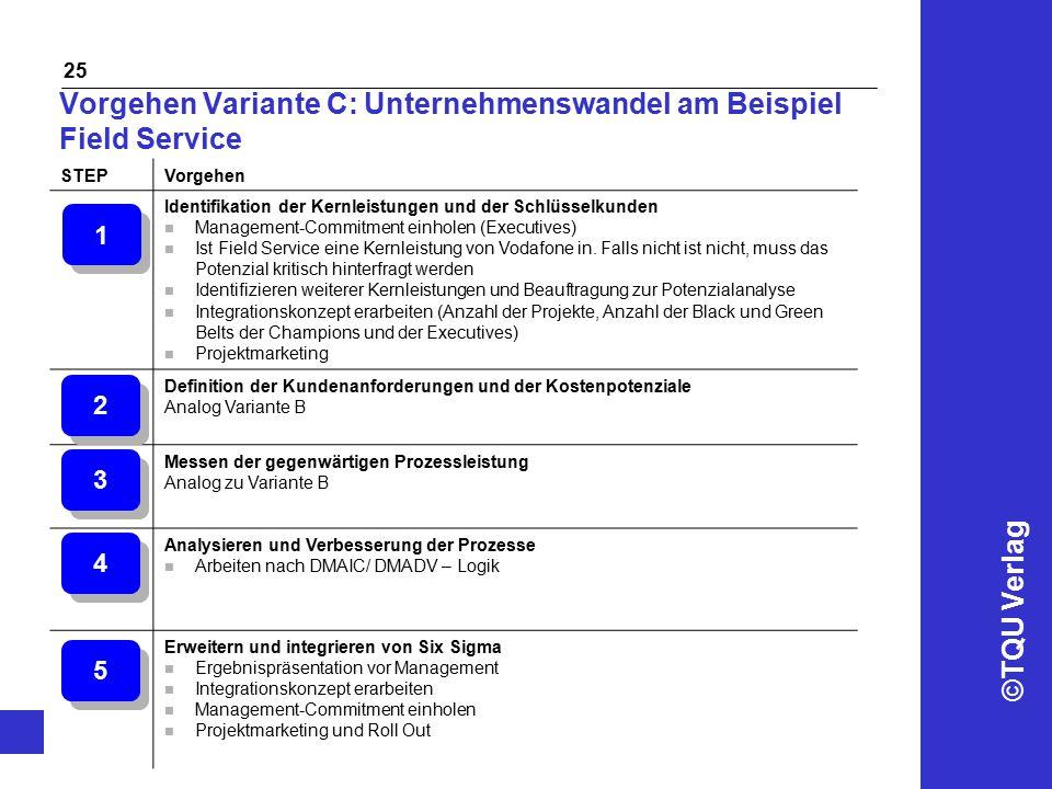 Vorgehen Variante C: Unternehmenswandel am Beispiel Field Service