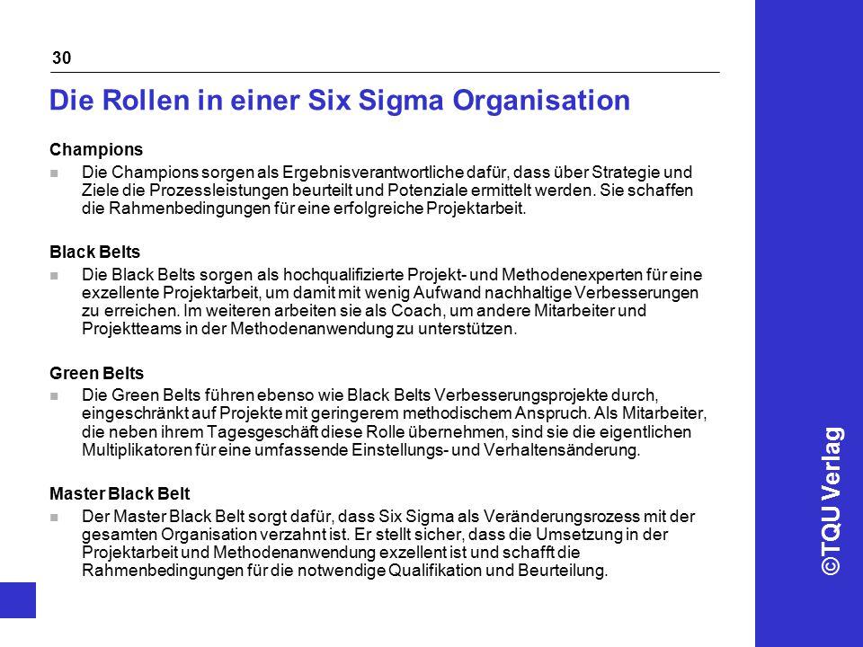 Die Rollen in einer Six Sigma Organisation