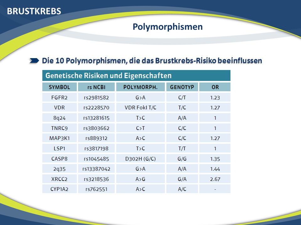 BRUSTKREBS Polymorphismen
