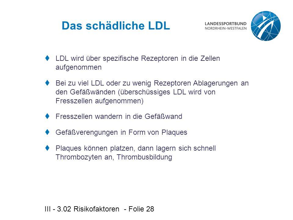Das schädliche LDL LDL wird über spezifische Rezeptoren in die Zellen aufgenommen.