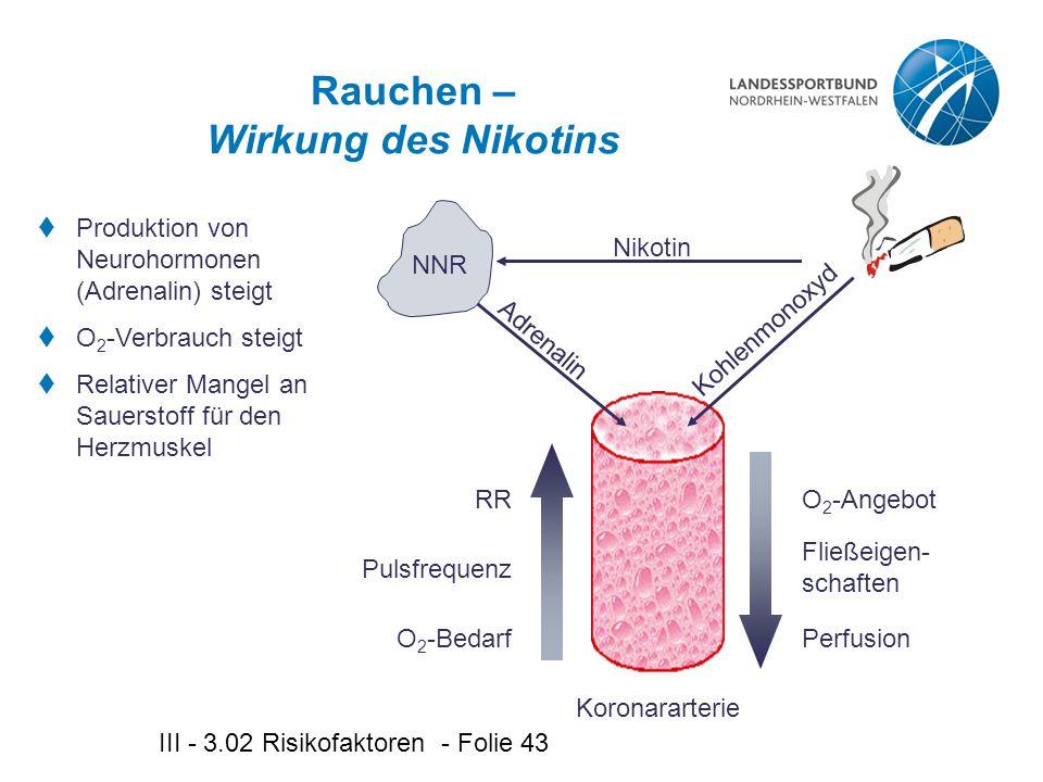 Rauchen – Wirkung des Nikotins